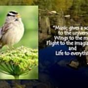 Sparrows Music Art Print