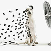 Spots Flying Off Dalmation Dog Art Print