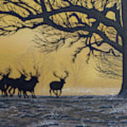Stags At Dawn Art Print