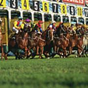 Start Of Horse Race, Sydney, New South Art Print