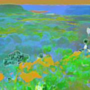 Steamboat Rock 03 Art Print