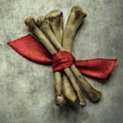 Still Life With Bones And Red Ribbon Art Print