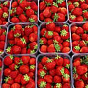 Strawberries For Sale, Bergen, Norway Art Print