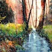 Sunlight Colorful Path Art Print