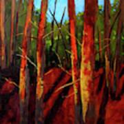 Sunny Forest Landscape Art Print