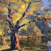 Sunset At Bond Lake Park Art Print