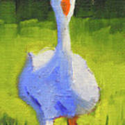 Sunshine Goose Art Print