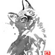 Surprised Cat Art Print