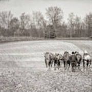 Team Of Six Horses Tilling The Fields Art Print