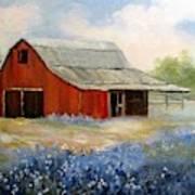 Texas Blue Bonnets And Red Barn Art Print