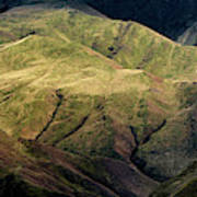 Textured Hills Panoramic Art Print