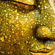 The Face Of Buddha Art Print