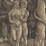 The Fall Of Mankind, 1511  Art Print