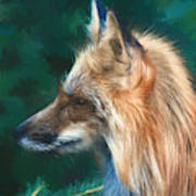 The Fox 235 - Painting Art Print