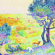 The Full Of Bormes - Digital Remastered Edition Art Print