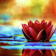The Lily Art Print