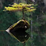 The Little Tree On Fairy Lake 5 Art Print