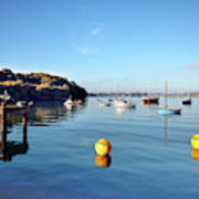 The Mylor Dolphin Art Print