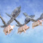 Three Little Pigs  Art Print