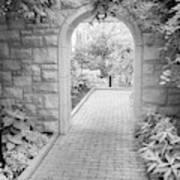 Through The Garden Gate Art Print