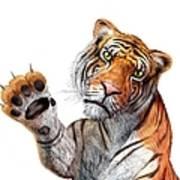Tiger, Artwork Art Print