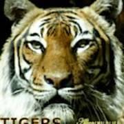 Tigers Mascot 4 Art Print