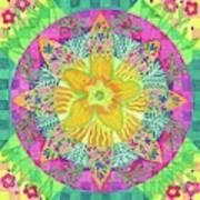 Tom's Squash Blossom Art Print