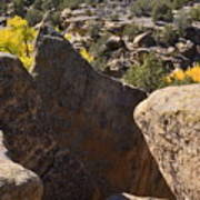 Top Of Rocks Above Canyon In Fall Art Print