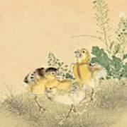 Top Quality Art - Keinen Kachoshokan 12view 3 Art Print
