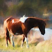 Totem Animal Book Horse Art Print