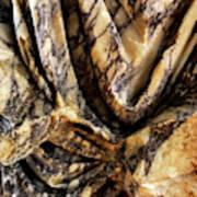 Trajan's Marble Art Print