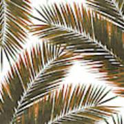 Tropical Palm Leaf Pattern 6 - Tropical Wall Art - Summer Vibes - Modern, Minimal - Brown, Copper Art Print