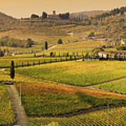 Tuscany Farmhouse And Vineyard In Fall Art Print