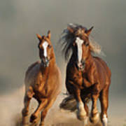 Two Wild Chestnut Horses Running Art Print