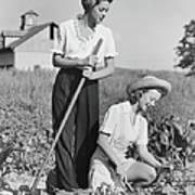 Two Women Working On Field, B&w Art Print