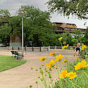 Urban Pathways Butler Park At Austin Hike And Bike Trail With Train Art Print