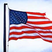 U.s. Flag 5 Art Print