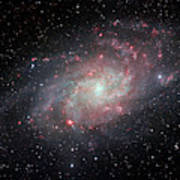 Very Detailed View Of The Triangulum Galaxy Art Print