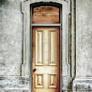 Vintage Door Art Print