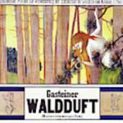 Vintage Poster - Gasteiner Waldduft Art Print