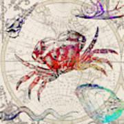 Vintage Sea Life 4  Art Print