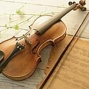 Violin And Music Sheet Art Print