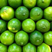 Wall Of Limes Art Print