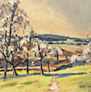 Warm Spring Light In The Fruit Orchard Art Print