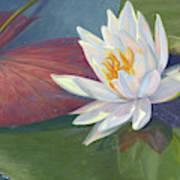 Water Beauty Art Print
