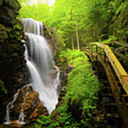 Water Falls In The Flume Art Print
