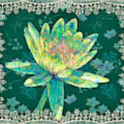 Water Lily And Lace Art Print