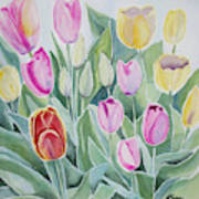 Watercolor - Spring Tulips Art Print