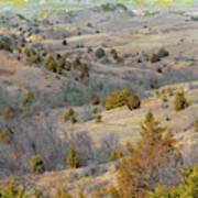 West Dakota Hills Reverie Art Print