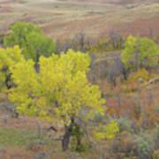 West Dakota September Splendor Art Print